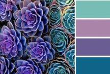 color / Beautiful and inspiring color combinations in art and life