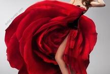 Beautiful dresses / by Jody Johnson