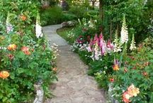 Down the Garden Path / by Jaylene Huyett