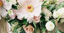 Florals & Bouquets
