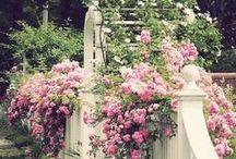 GardenTraD