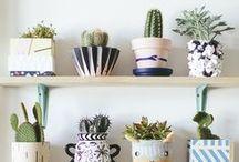 Pflanzenliebe :: / Der grüne Daumen und die Liebe zu Pflanzen ist da. Hier sammle ich Inspiration zum Wohnen mit Pflanzen.