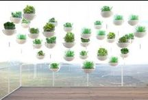 G.R.E.E.N.S / Farm where you are. urban farming, indoor farming, farm-to-table concepts. / by Khai Lin