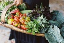 Bountiful / by Michelle White