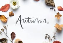 Autumn / Fall décor, activities, recipes, and everything pumpkin spice!