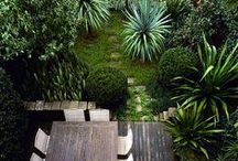 Home // Garden / by Fonda LaShay