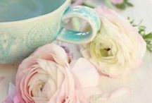 Pastels / by Rose Petals