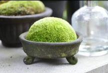 Un verde stimolante