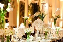 Wedding / Hydrangeas in the Hamptons