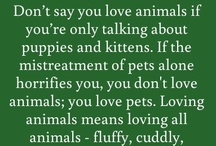 Do You Really Love Animals? / by Ecolissa