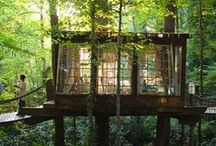 #cabinporn / Wooden houses and cabins made of dreams