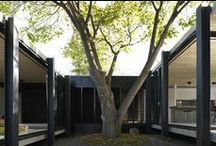 Courtyard House / by Fonda LaShay