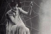 Spirit | The Spider Brand (Artist, Creator, Inventor)