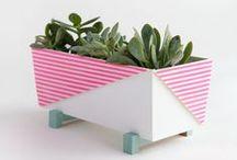 POTS, PLANTERS&VASES /MACETAS&JARRONES / Ideas y DIYs sobre macetas y cómo exponer plantas y flores
