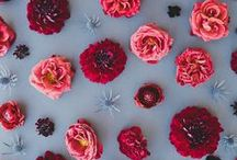 Brautstrauss - Blumen | Bridal bouquet / Brautstrauss | Brautstrauß | Bouquet Hochzeit | Hochzeit | Hochzeitsbouquet | Wedding Bouquet | Wedding | Bridal Bouquet / by CorinnaVatter Fotografie
