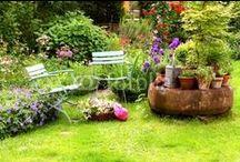 Garten   Gardening / Stillleben   Garten   Still life in German garden  