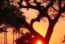 My Valentine!!