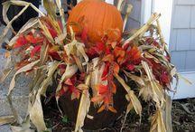 Corn Stalk Decor
