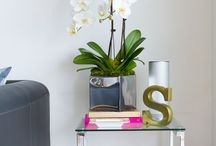 Staging This & That / by Luci @Bungalow Home Staging & Redesign