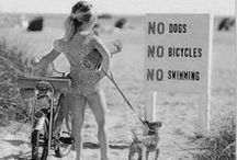 The why not board ☆ / You know those pictures, pin or just fun word you have no where to put?!...