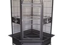 Bird Cages / Bird cages for parrots, macaws, conures, cockatiels, cockatoos and more.