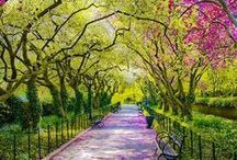 Beautiful places and landscapes / Paisajes hermosos / by Daniela: a bit of everything