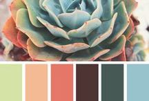 Color Inspiration / by Sarah Rinna