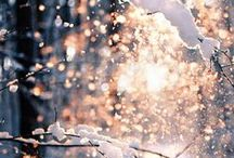 winter ღ / for whenever people dare to ask me why I love winter so much.