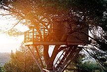 My Tree-House Dream / by Sumeyye Gunbayli
