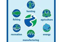 Conservation Issues / All of the issues we face when trying to conserve our natural resources.