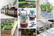 Bricolage: il giardino / http://www.mattiolisrl.com/it/bricolage/