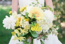 Weddings ~ Sunshine & Citrus