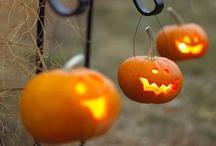 Halloween / by amanda erlinger