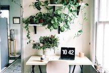 apartment / apartment, home, interior design, decor