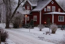Cottage in the woods / Follow along at www.theredberrycottage.blogspot.com