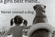 Another reason dogs are better than cats.