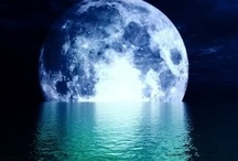 Bark at the MOON! / Beautimus Moonlight scenes from all over the world