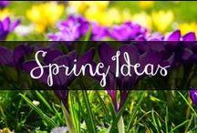 CA Spring Ideas