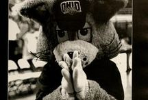 Ohio U's Bobcat & Bobkitten / Materials related to Ohio University's mascots from the collections of the Mahn Center for Archives & Special Collections, Ohio University Libraries. Find more at http://media.library.ohiou.edu  / by Ohio University Libraries Digital Collections