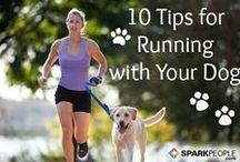 Get Fit (with Your Dog) / Time to get fit! It's better with a partner so do it with your dog.