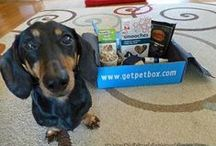 Contests & Giveaways / Contests, giveaways, and sweepstakes. Most of them are dog or pet related.