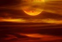 COLOR - Orange / by Michelle Savoy