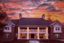 Home Sweet Home: Alpha Phi Chapter Houses