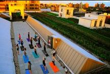 Yoga at Brooklyn Grange / Endless summer days with their long, cool evenings beg for you to stay outside until the sun goes down. Enter sunset yoga at Brooklyn Grange's Brooklyn Navy Yard farm!