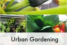 Ordnungsliebe - Garten & Balkon / Makeover, Inspiration und tolle Ideen für Garten und Balkon