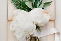 Bloom / by Erin Souder    | Earnest Home Co