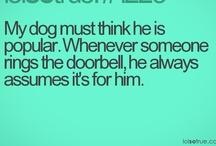 Doggie stuff / by Devyn Jade Smart