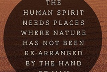 Inspirational / #Spirit #Life #Quotes #Inspiration  / by Bent Whims Studio