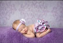 Photography - NEWBORN / BABY / by Meagan Broomhall