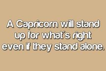 I Am Capricorn! / This says it all. I don't follow the horoscope, but some of the character traits are eerily right on! / by Suki L.G.K.